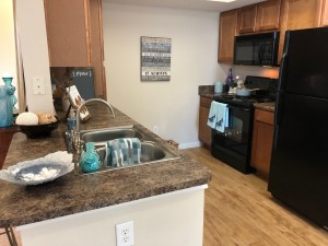 1 Bedroom Apartments in NW Houston, TX for Rent - 1a