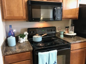 1 Bedroom Apartments in Northwest Houston, TX for Rent - 1a