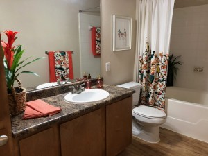 One Bedroom Apartments for rent in NW Houston, TX - 1b