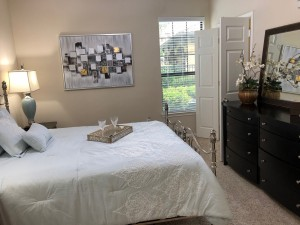 Two Bedroom Apartments for rent in NW Houston, Texas - 1b