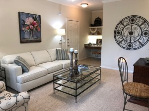 Two Bedroom Apartments in NW Houston, TX for Rent - 1a