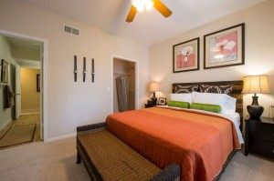 Two Bedroom Apartment Rental in Houston