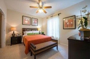 One Bedroom Apartment Rental in Houston