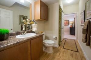 2 Bedroom Apartment Rental in Houston