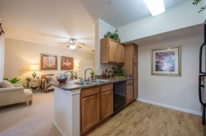 Three Bedroom Apartment for Rent in Houston TX